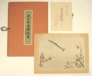 Ono Bakufu: Grey Mullet - Pictures of Fish in Japan Vol.3 - Artelino
