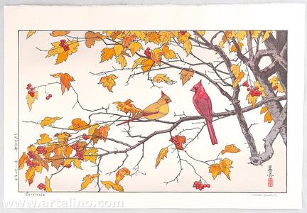 吉田遠志: Cardinals - Artelino