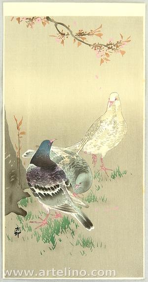 小原古邨: Pigeons under Cherry Tree - Artelino