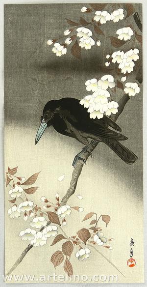 Imao Keinen: Crow and Cherry Blossoms - Artelino