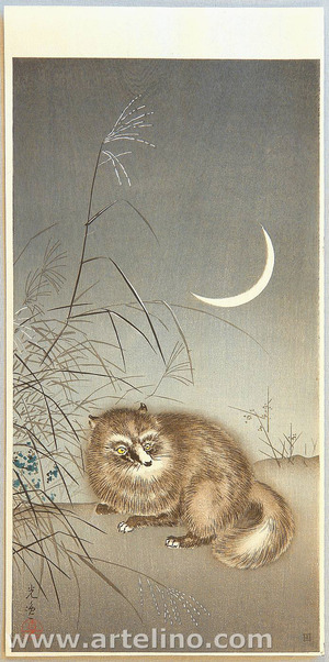 風光礼讃: Racoon Dog and Moon - Artelino
