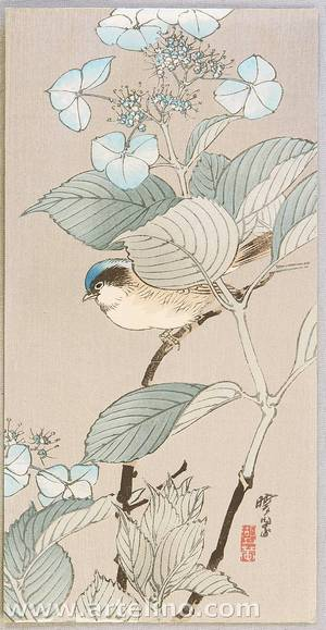 Kawanabe Gyosui: Bird and Hydrangea - Artelino
