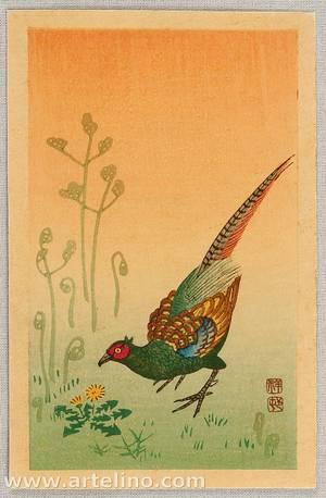 Ohara Koson: Pheasant - Artelino