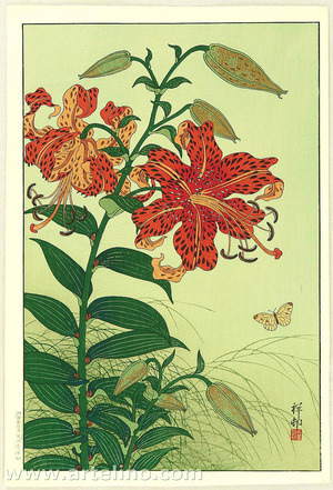 Ohara Koson: Tiger Lilies and Butterfly - Artelino