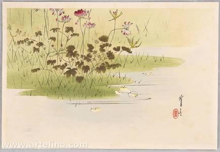 Watanabe Seitei: Birds and Flowers by Seitei - Crown Vetch on Marsh - Artelino