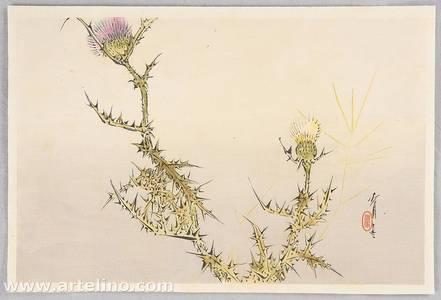 Watanabe Seitei: Birds and Flowers by Seitei - Thistle - Artelino