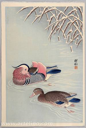 Ohara Koson: Mandarin Ducks in Snow - Artelino
