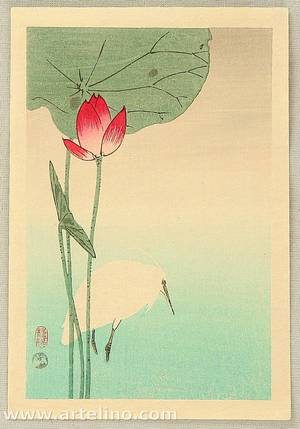 小原古邨: Egret and Lotus - Artelino