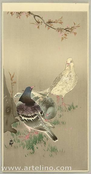 Ohara Koson: Pigeons under Cherry Tree - Artelino