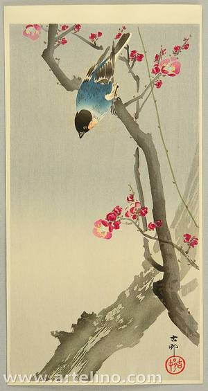 Ohara Koson: Bullfinch on Plum Tree - Artelino