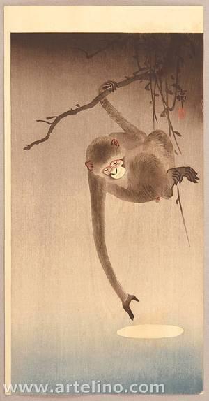 Ohara Koson: Monkey and Moon - Artelino