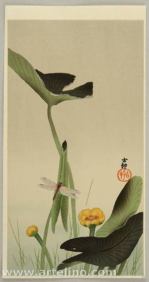 Ohara Koson: Dragonfly and Lotus - Artelino
