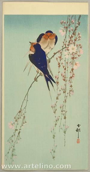 Ohara Koson: Swallows and Hanging Cherry Blossoms - Artelino