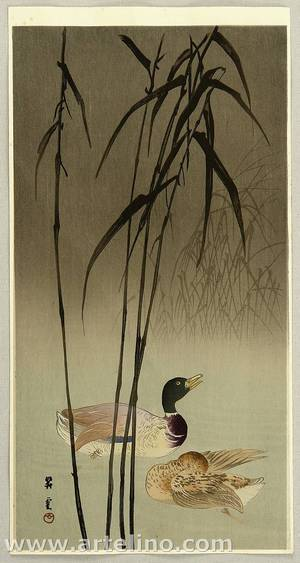 山本昇雲: Mallard Ducks and Reeds - Artelino