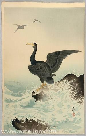 Ohara Koson: Cormorant - Artelino