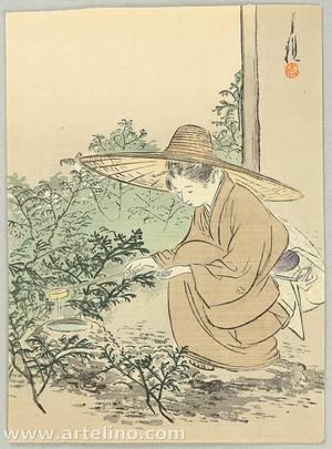 Ogata Gekko: Preparing Tea Ceremony - Artelino