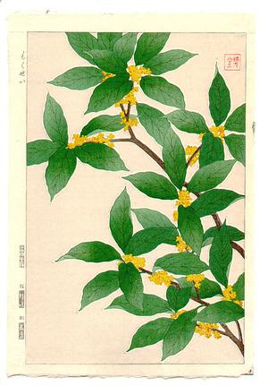 Kawarazaki Shodo: Mokusei - Artelino