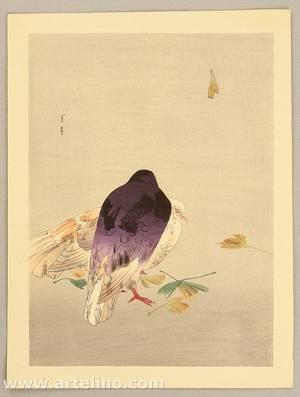 Watanabe Seitei: Pigeons - Artelino