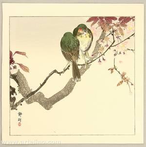 静湖: Green Bird on a Branch - Artelino
