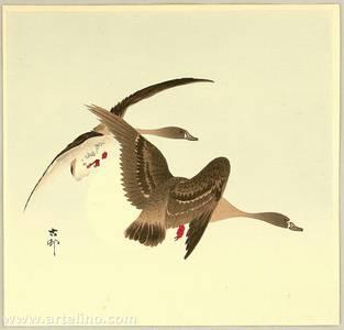 小原古邨: Two Wild Geese - Artelino