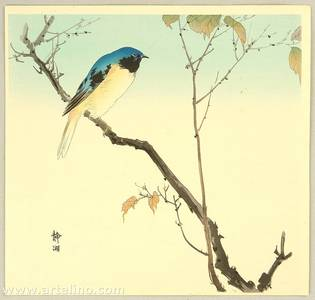 静湖: Bird on Branch - Artelino