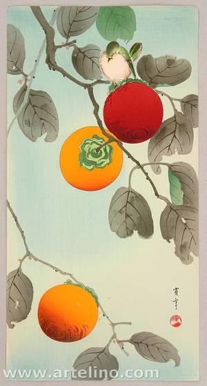 Watanabe Seitei: Bird on a Persimmon Tree - Artelino