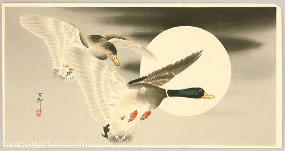 小原古邨: Two Mallard Ducks and the Moon - Artelino