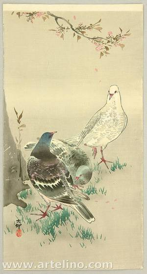 小原古邨: Pigeons under Cherry Tree - Artelino
