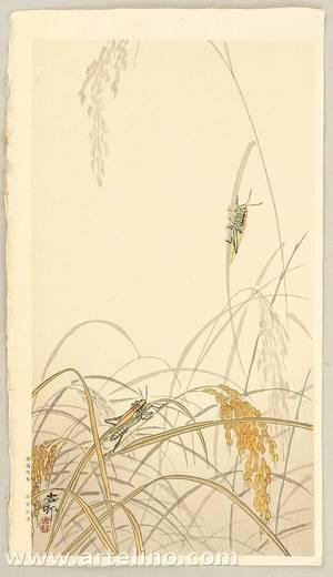 Ohara Koson: Grasshoppers - Artelino