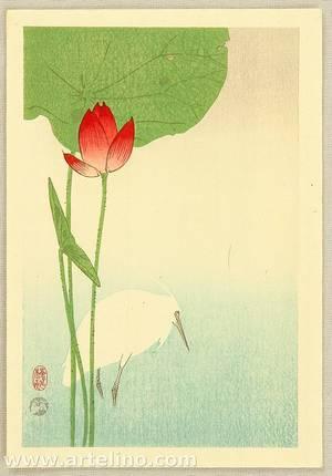 小原古邨: Egret and Lotus - Artelino