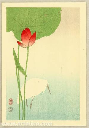 Ohara Koson: Egret and Lotus - Artelino