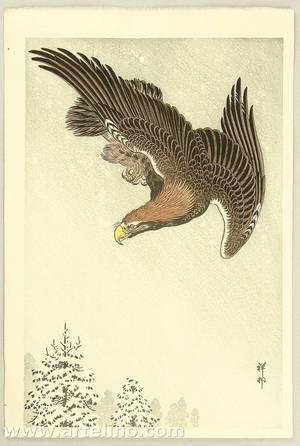 小原古邨: Eagle in Flight against Snowy Sky - Artelino