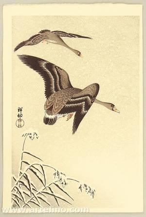 小原古邨: Geese in Snow Falling Sky - Artelino
