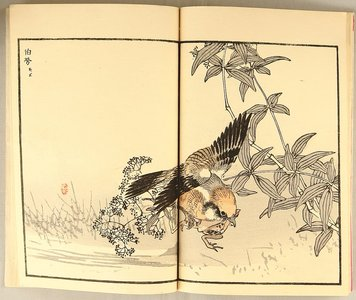 幸野楳嶺: Birds and Flowers - book - Artelino