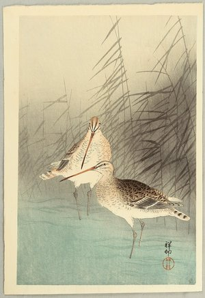 小原古邨: Bar-tailed Godwits - Artelino