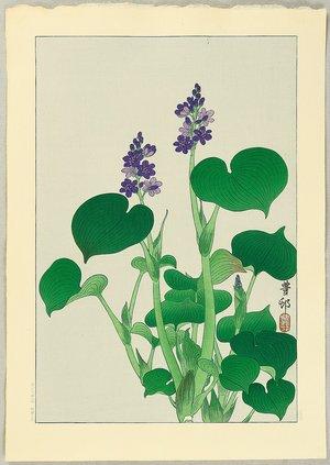 Ohara Koson: Purple Flowering Hosta - Artelino