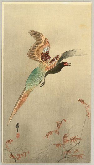 Ohara Koson: Pheasant in Flight - Artelino