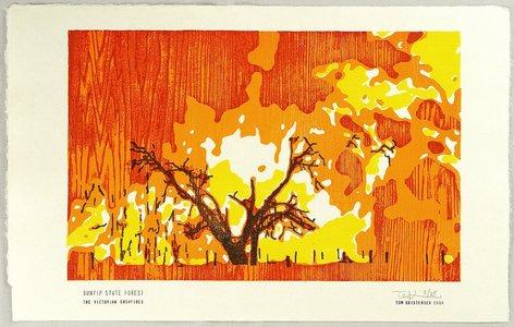 Tom Kristensen: Bunyip State forest - The Victorian Bushfires - Artelino