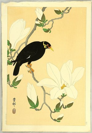 Ohara Koson: Indian Hill Minor and Magnolia - Artelino