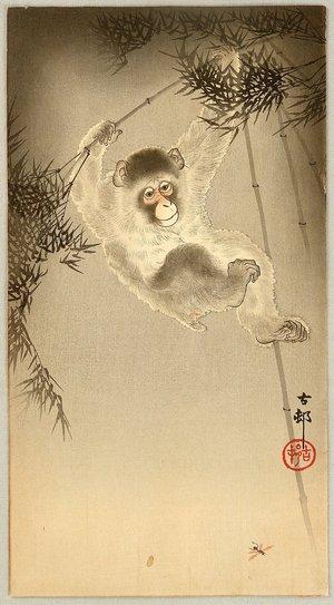 Ohara Koson: Monkey - Artelino