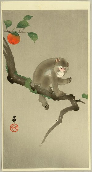 Ohara Koson: Monkey in a Tree - Artelino