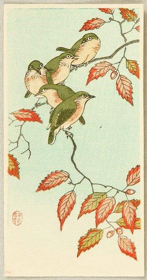 Ohara Koson: Five Small Birds perch on a Acorn Tree - Artelino
