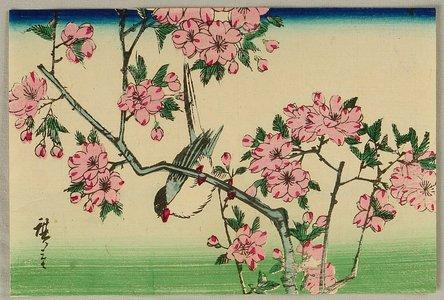 Utagawa Hiroshige III: Bird and Cherry Blossoms - Artelino