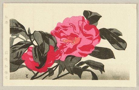 稲垣知雄: Red Camellia - Artelino