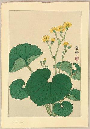 Ohara Koson: Ligularia - Artelino