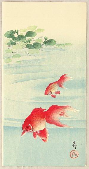 Ohara Koson: Two Goldfish - Artelino