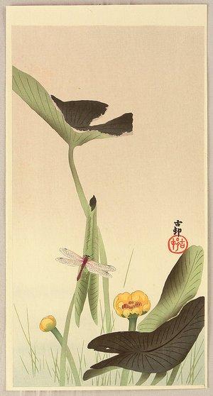 Ohara Koson: Dragonfly and Lotus - Artelino