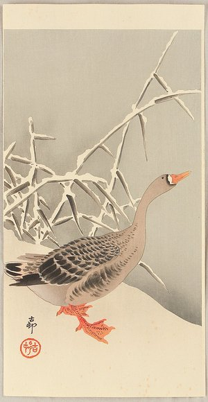 Ohara Koson: Goose and Reeds - Artelino