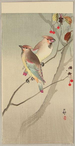 小原古邨: Two Japanese Waxwings in Autumn - Artelino