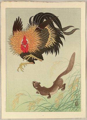 小原古邨: Rooster and Weasel - Artelino